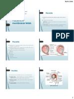 Placenta e Membranas Fetais