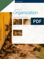 McKinsey on Organization Agility and Organization Design