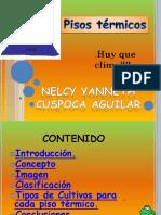 lospisostermicos-131011192823-phpapp02