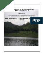 EIA-puente-la-Concordia.pdf