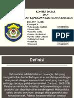 HIDROCEPHALUS