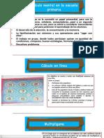 CALCULO MENTAL.pptx