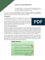 PERDIDA DE CALOR DEL RECIEN NACIDO.docx