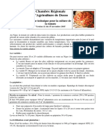 FT_Tomate_CRADosso_V1.pdf