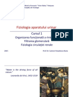 Ren-Curs1_2015.pdf