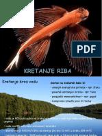 Kretanje riba