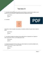 Test Tema 12