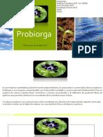 Probiorga.pptx