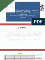 Flexbox.pdf