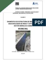 Informe de Diagnostico - CASMA