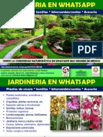 Jardineria en Naturopatia Grupos Whatsapp Beneficios Membresia 2017