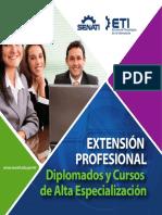 Brochure Diplomados.pdf