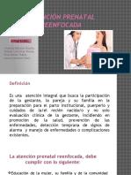Control Prenatal Reenfocado