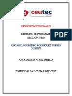 OscarRodriguez 31121727 Tarea-08 Riesgos Profesionales