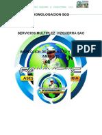 Inspeccion Seguridad Medio Ambiente Homologacion Sgs