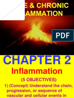 Ch2-Inflam.ppt