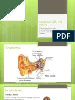 Anatomia Del Oido