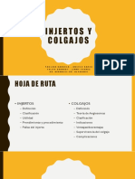 INJERTOS+COLGAJOS FINAL.pptx