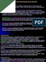 Patologija CNS i Perifernog NS
