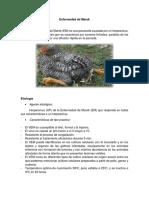 Enfermedad de Marek virologia.docx