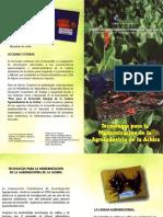 MODERNIZACION DE LA AGROINDUSTRIA DE LA ACHIRA.pdf
