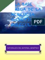 16 Genética Molecular.pdf