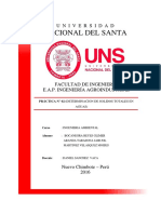 solidos-totales-informe-2.docx