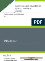 Producción de Insulina a Partir de Organismos Bacterianos