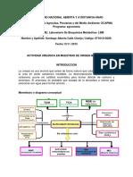 preinforme actividad ureasica.docx