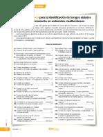 30_Clave hongos de suelo mediterraneo.pdf