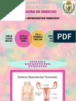 Sitema Femenino Bio
