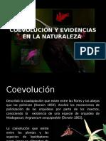 Coevolución y Evidencias en La Naturaleza