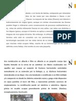 Clase II Vetas, Filón, Mantos