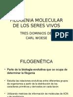 Filogenia Molecular de Los Seres Vivos 2017