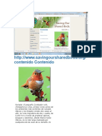 Aves de Ameirca Estado de Consrvacion