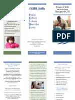 pcit brochure template