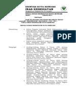 Sk Pengorganisasian Pis-pk