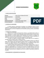 INFORME PSICOPEDAGOGICO Nelson Maldonado.doc