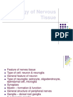 Histology of Nervous Tissue