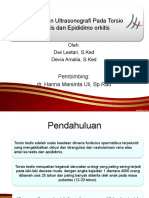 Referat Gambaran USG Torsio Testis Dan Epididimoorkitis