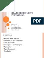 REATORES DE LEITO FLUIDIZADO