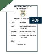 Monografia Las Enzimas y Los Acidos Nucleicos.docx