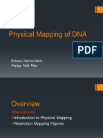 Physical Mapping