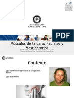 Clase 07 Miologia Facial y Masticatoria
