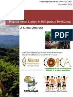 Tropical Forest Carbon in Indigenous Territories