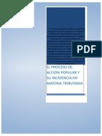 268764149 Proceso de Accion Popular Trabajo Completo Docx