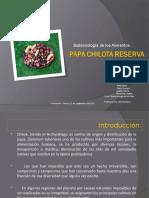 Papa Chilota Reserva Genética