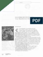 Dialnet-LosDerechosHumanosYElTrianguloDelBienestar-4536408.pdf