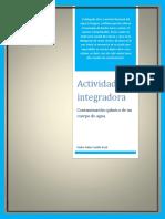 CastilloPech Pedro M20S1 Contaminacionquimicadelagua