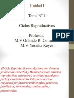 Ciclo Reproductivo Unidad 1
